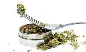 Jak Uzyskać Medyczną Marihuanę w Kanadzie?, CBDLeczy.pl