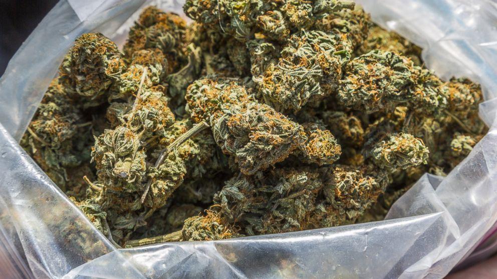 Trochę wiedzy o medycznej marihuanie, CBDLeczy.pl