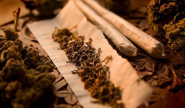 Bądź świadom cen marihuany w Kanadzie!, CBDLeczy.pl