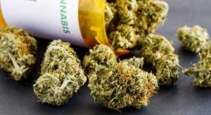 medyczna-marihuana-na-stole