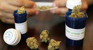 medyczna-marihuana-po-raz-kolejny