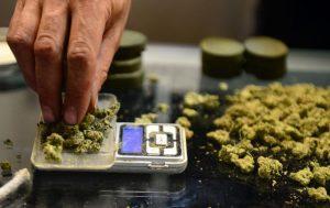 Badania pokazują, że związki zawarte w medycznej marihuanie mogą osłabiać zakażenie wirusem HIV, CBDLeczy.pl