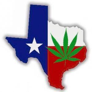 Teksański polityk chce dekryminalizacji marihuany, CBDLeczy.pl