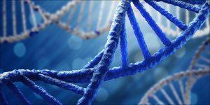 Czy stosowanie cannabis jest w naszym DNA?, CBDLeczy.pl