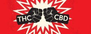 Weterani popierają badania nad marihuaną, CBDLeczy.pl