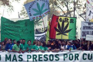 Argentyna legalizuje olej cannabis, CBDLeczy.pl