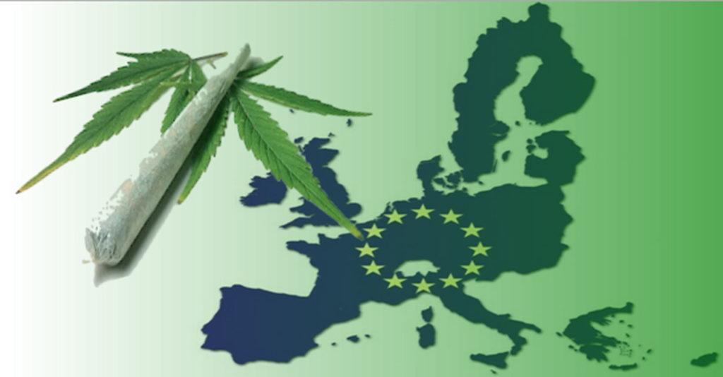 Kalifornia odnotowuje wzrost nielegalnego przepływu marihuany, CBDLeczy.pl