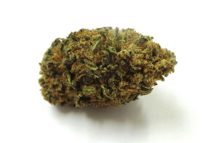 Nowy Jork zatwierdza dekryminalizację marihuany, CBDLeczy.pl