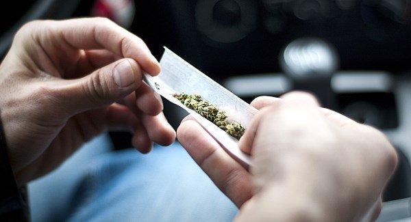 """Mocne Odmiany Marihuany """"Mogą Leczyć COVID 19"""", CBDLeczy.pl"""