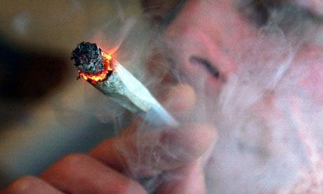 Używanie Marihuany Wiąże Się z Niższym BMI, CBDLeczy.pl